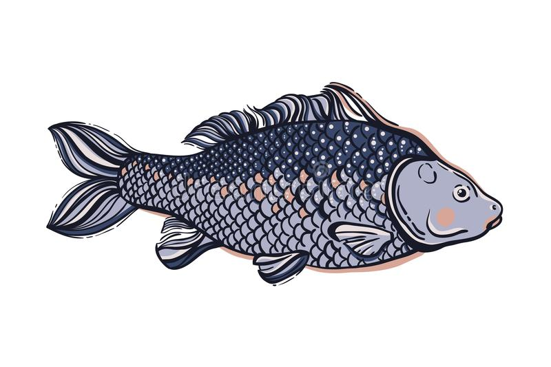 Carp. Chinese symbol of good luck, courage, persistence, perseverance, wisdom and vitality. Vector illustration vector illustration