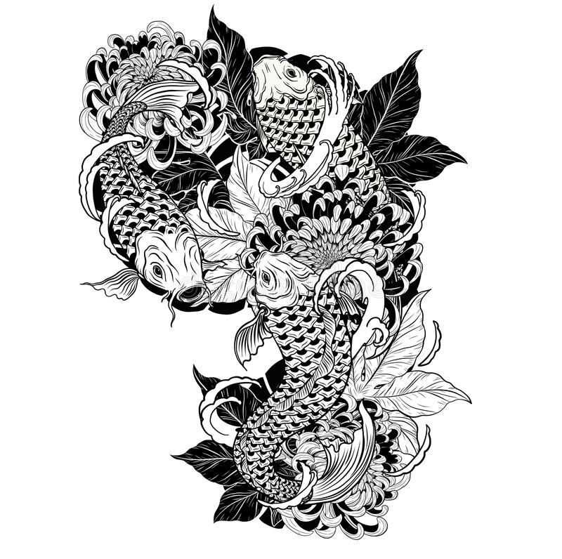 Carp fish and chrysanthemum tattoo by hand drawing. vector illustration