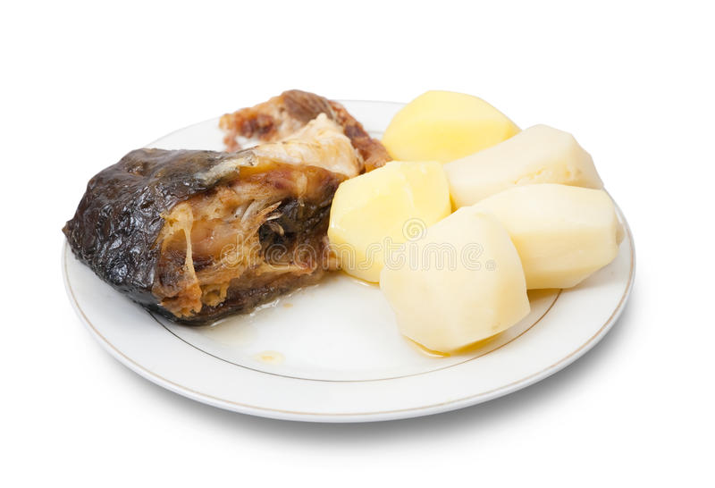 Carp fish with potatoes on the white plate. Grilled carp fish with potatoes on the white plate over white stock images