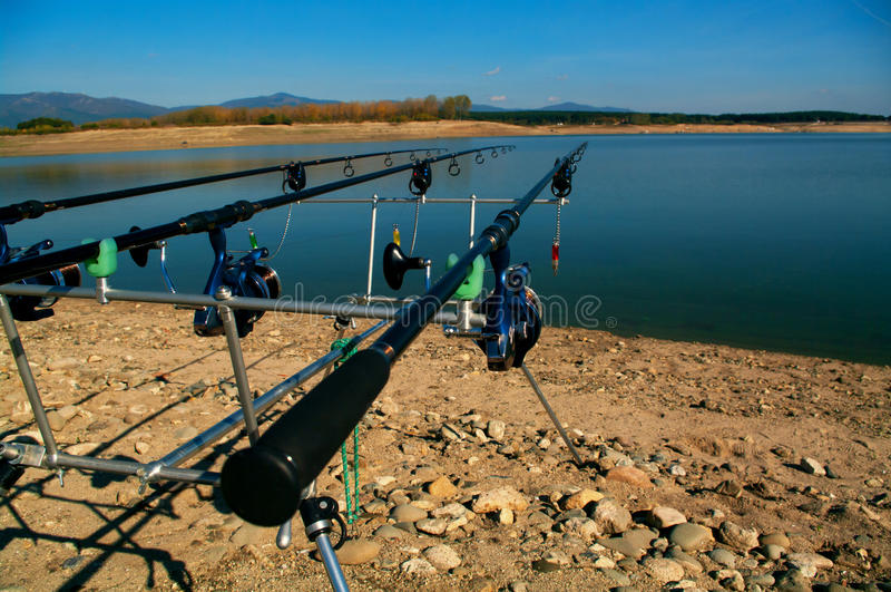 Carp fishing. Two angling scene. Looking along three carp rods towards a pond. royalty free stock photo