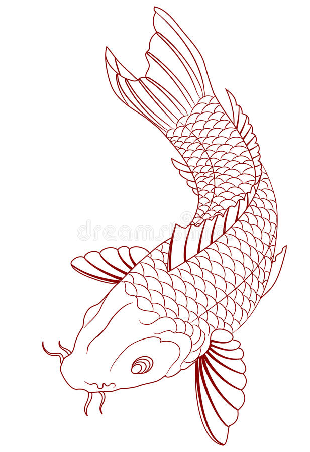 Carpa de Koi ilustração stock