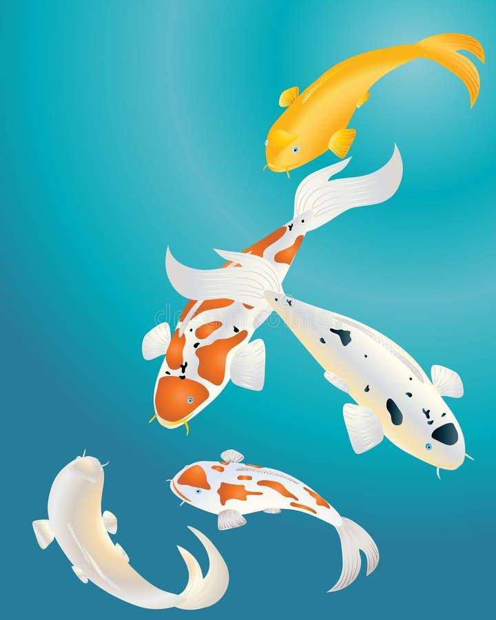 Carpa de Koi libre illustration