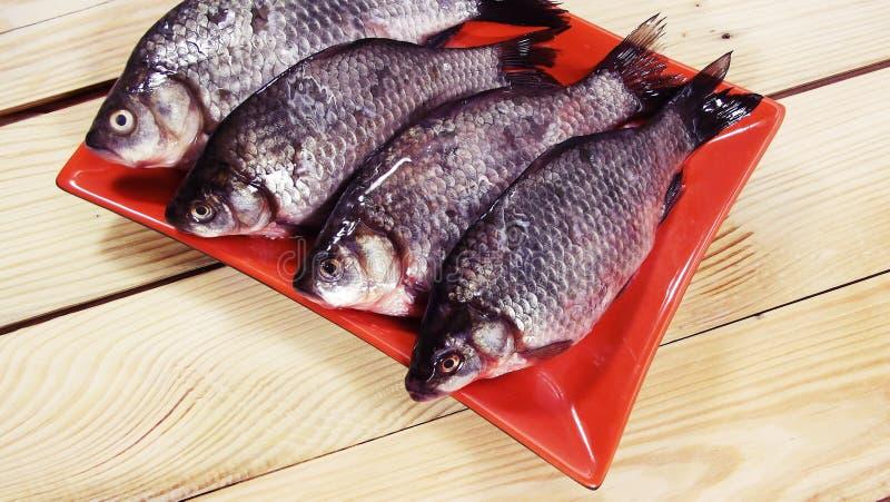 Carpa de los pescados imagenes de archivo