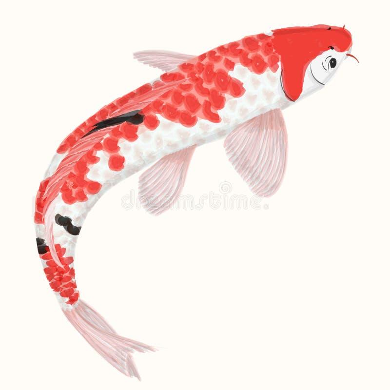 Carpa dell'arcobaleno di Koi Pesce disegnato a mano isolato illustrazione di stock