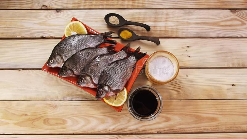 Carpa dos peixes imagens de stock royalty free