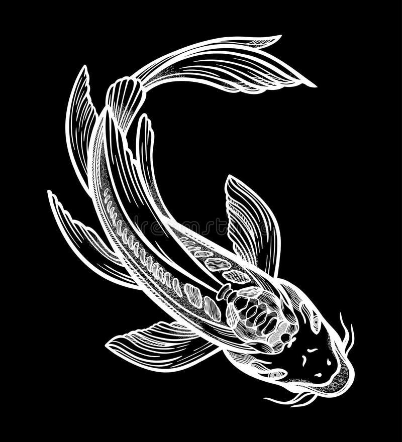 Carpa ?tnica tirada m?o de Koi dos peixes - s?mbolo da harmonia, sabedoria Ilustra??o do vetor isolada Arte espiritual para a tat ilustração stock