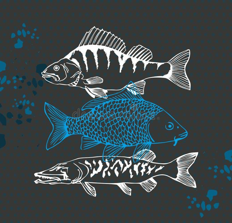 Carpa, vara e peixes do pique ilustração stock
