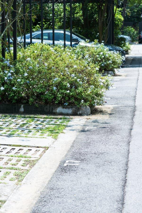 Download Carpark stock photo. Image of asphalt, carpark, park - 26218194