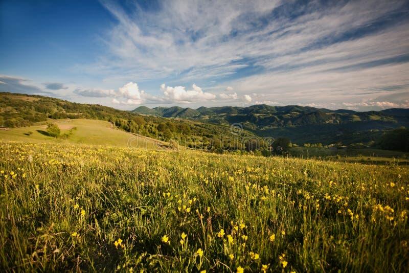 Carpathian berg royaltyfri foto