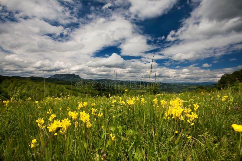 Carpathian berg arkivbild