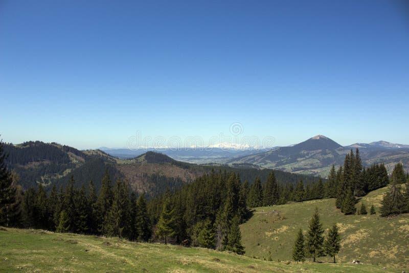 Carpathian berg som ses från Vatra Dornei arkivfoton