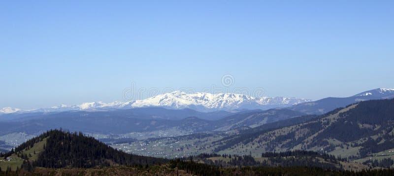 Carpathian berg som ses från Vatra Dornei royaltyfri foto
