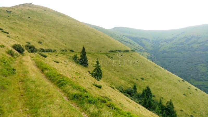Carpathian Chornohora royaltyfri bild