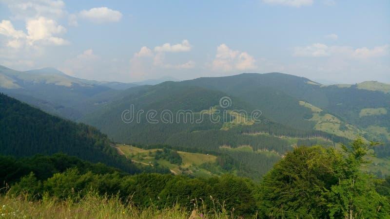 Carpathian Chornohora arkivfoton