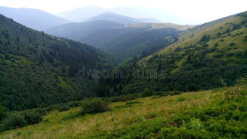 Carpathian Chornohora arkivbild