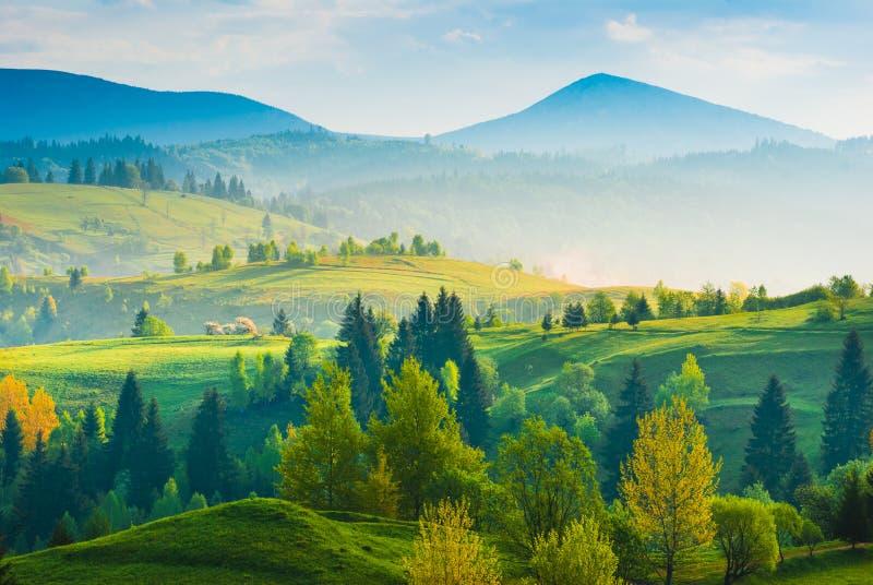 Carpathian dal för vår arkivfoton