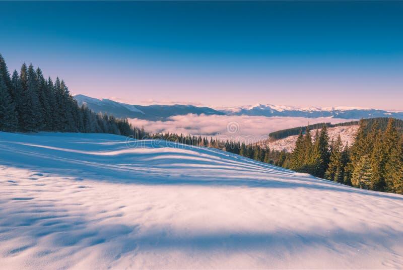 Carpathian dimmigt berg royaltyfri foto