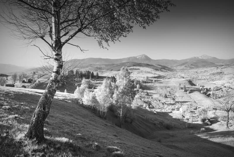 Carpathian by i ett Spring Valley svart white arkivfoton