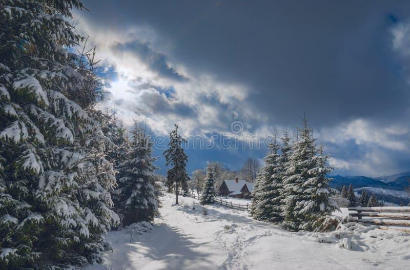 Carpathian by i vinter arkivbild