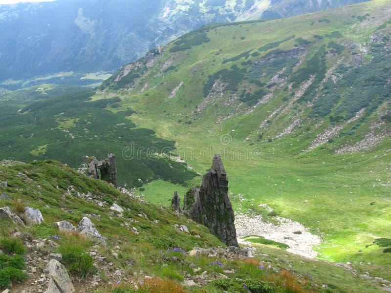 Carpathian landscape. Chornohorsky ridge, Ukraine, Europe stock photography