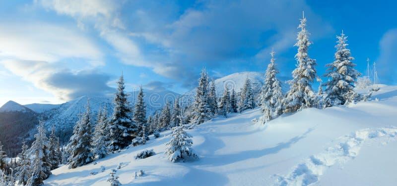 Carpathian landskap för morgonvinterberg (, Ukraina). royaltyfri fotografi