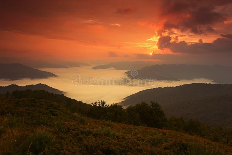 Carpathian landskap för sommar royaltyfri fotografi