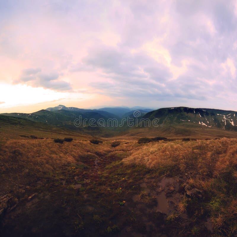 Carpathian landskap för sommar arkivfoto