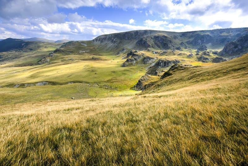 The Carpathian Mountains, Romania royalty free stock image