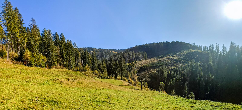 Landscape with carpathian mountains in the spring season. Carpathian mountains in sunny day in the autumn season ukraine landscape forest beautiful green nature stock photos