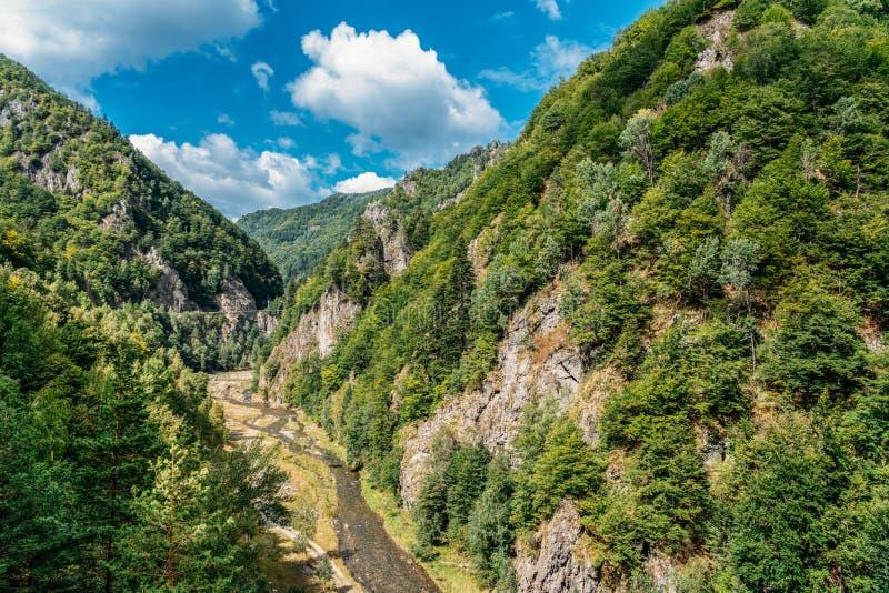 Carpathian Mountains View On Transfagarasan Road In Romania stock images