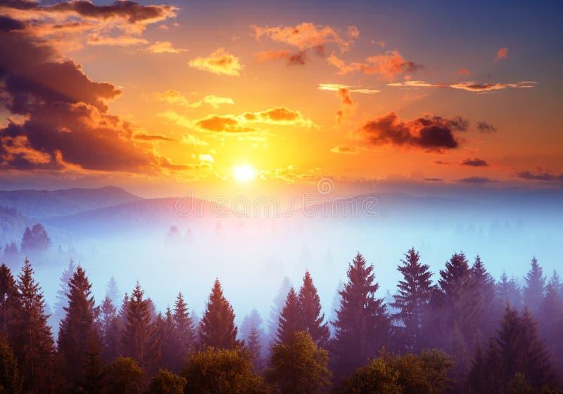 Carpathian nationalpark för lägeställe, Ukraina, Europa arkivfoto
