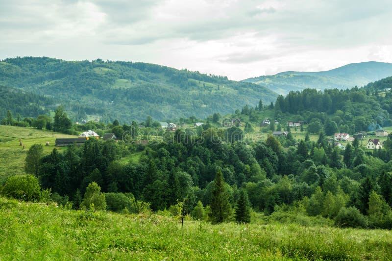 Carpathian sommarlandskap Grön skog bland bergen, mistflöten ovanför den royaltyfria foton