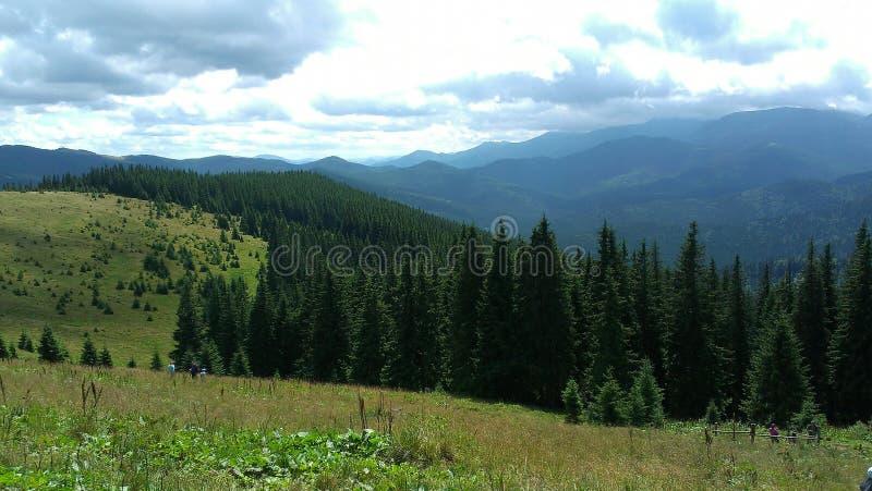 Carpathians zdjęcie stock