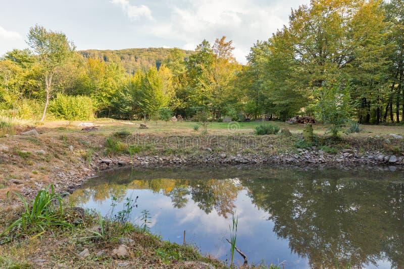 Carpathians kształtują teren z małym jeziorem zdjęcie stock