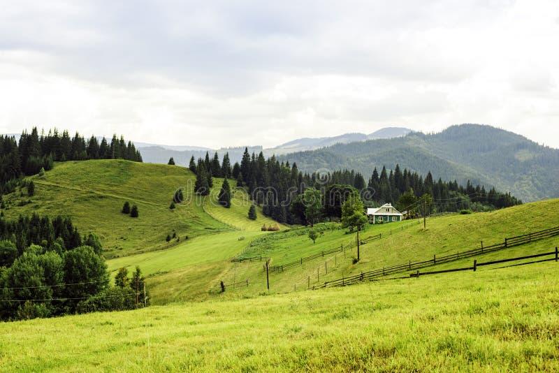 Carpathians landskap royaltyfri bild