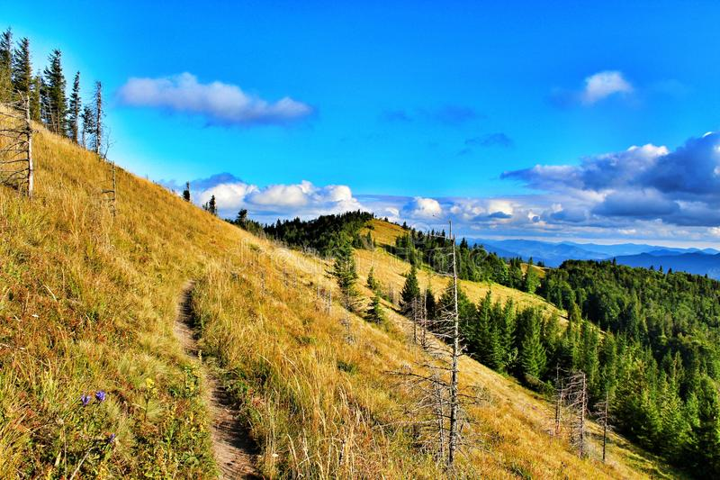 Carpathians Mountais, Ουκρανία στοκ φωτογραφία με δικαίωμα ελεύθερης χρήσης