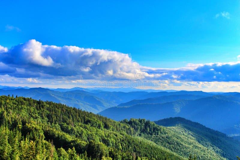 Carpathians Mountais, Ουκρανία στοκ εικόνες με δικαίωμα ελεύθερης χρήσης