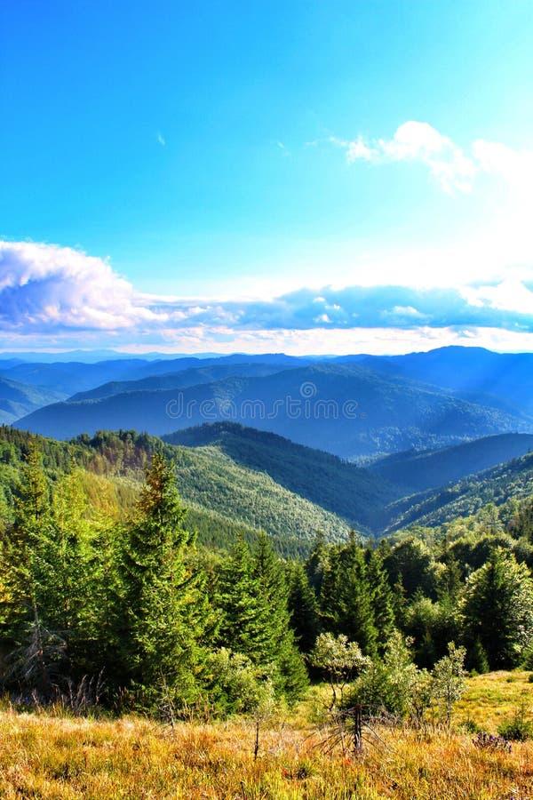 Carpathians Mountais, Ουκρανία στοκ εικόνα με δικαίωμα ελεύθερης χρήσης