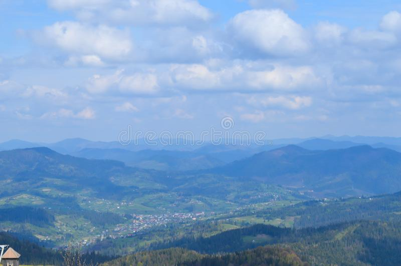 Carpathians skog i Maj royaltyfria foton