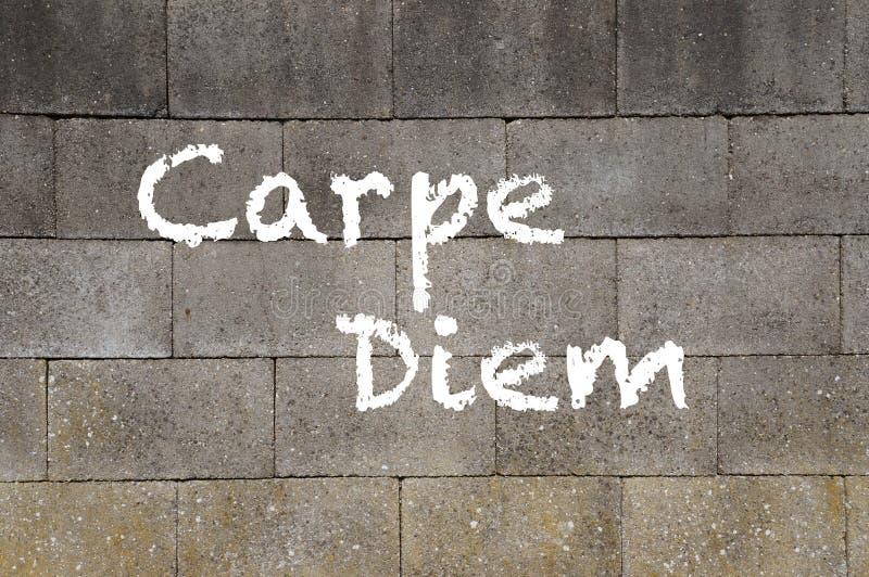 Carpe Diem fotografia royalty free