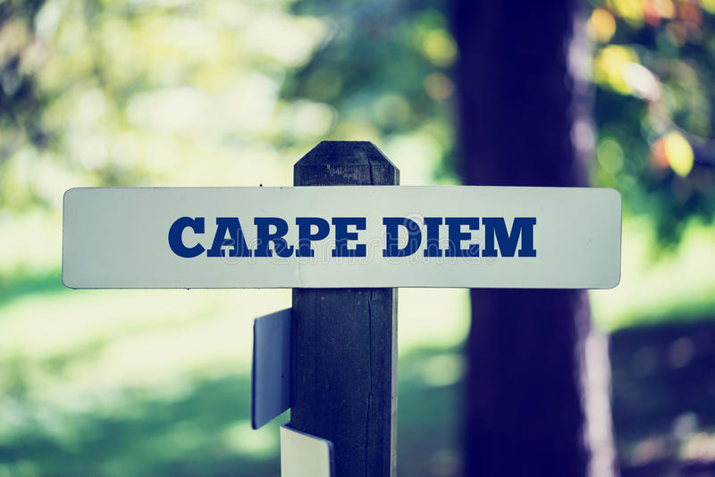 Carpe Diem foto de stock