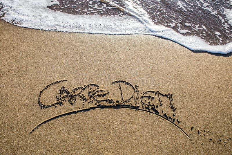 Carpe diem en la playa imagenes de archivo