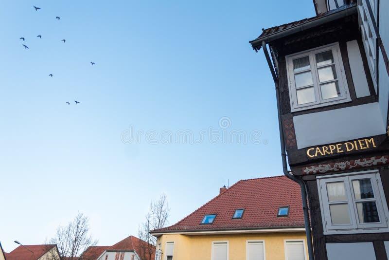 Carpe diem escrito en un edificio alemán en letras de oro fotografía de archivo