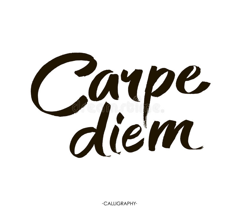 Carpe diem. In latin means Catch the moment. Hand-lettering using a brush inspirational quote on white vector illustration