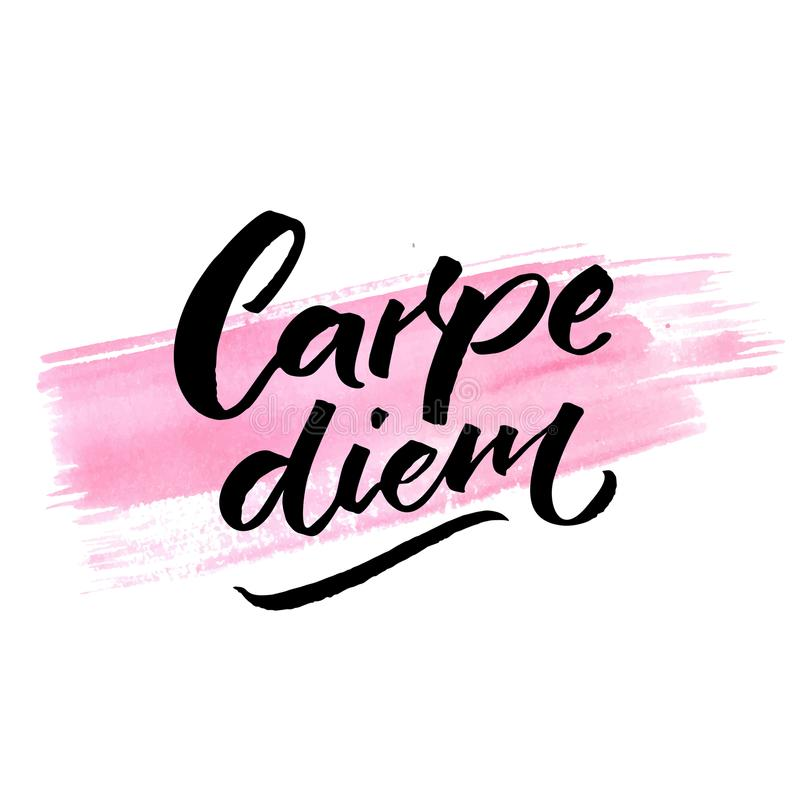 Carpe diem - latin phrase means seize the day, enjoy the moment. Inspiration quote brush calligraphy handwritten on pink vector illustration