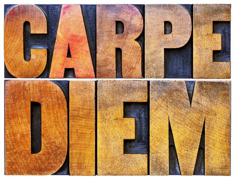 Carpe diem in letterzetsel houten type royalty-vrije stock foto's