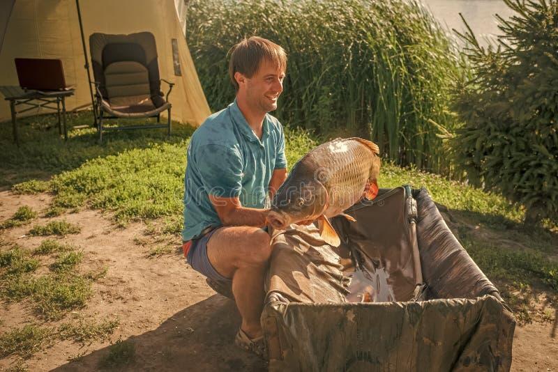 Carpe et pêcheur, trophée de pêche de carpe images libres de droits