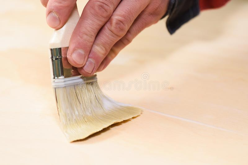 Carpenter at work. Close up of covering wooden surface with acryl lacquer. Copyspace royalty free stock image