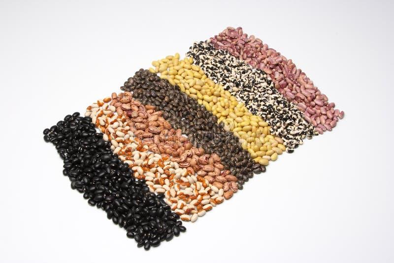 Carpet of beans 1 stock photos