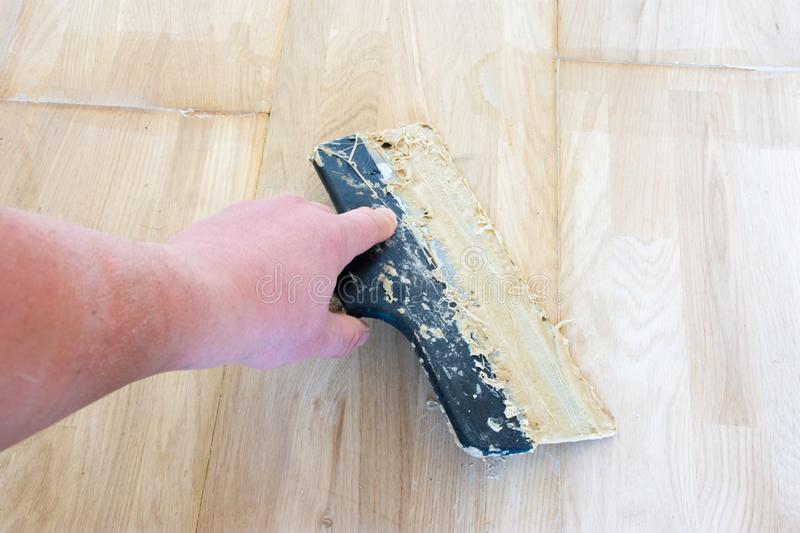 Carpet fitter master or floor person holding a spatula with wooden glue that is on the laid parquet. Photo scene from carpenter wo royalty free stock photo